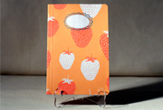 sorbet-notebooks